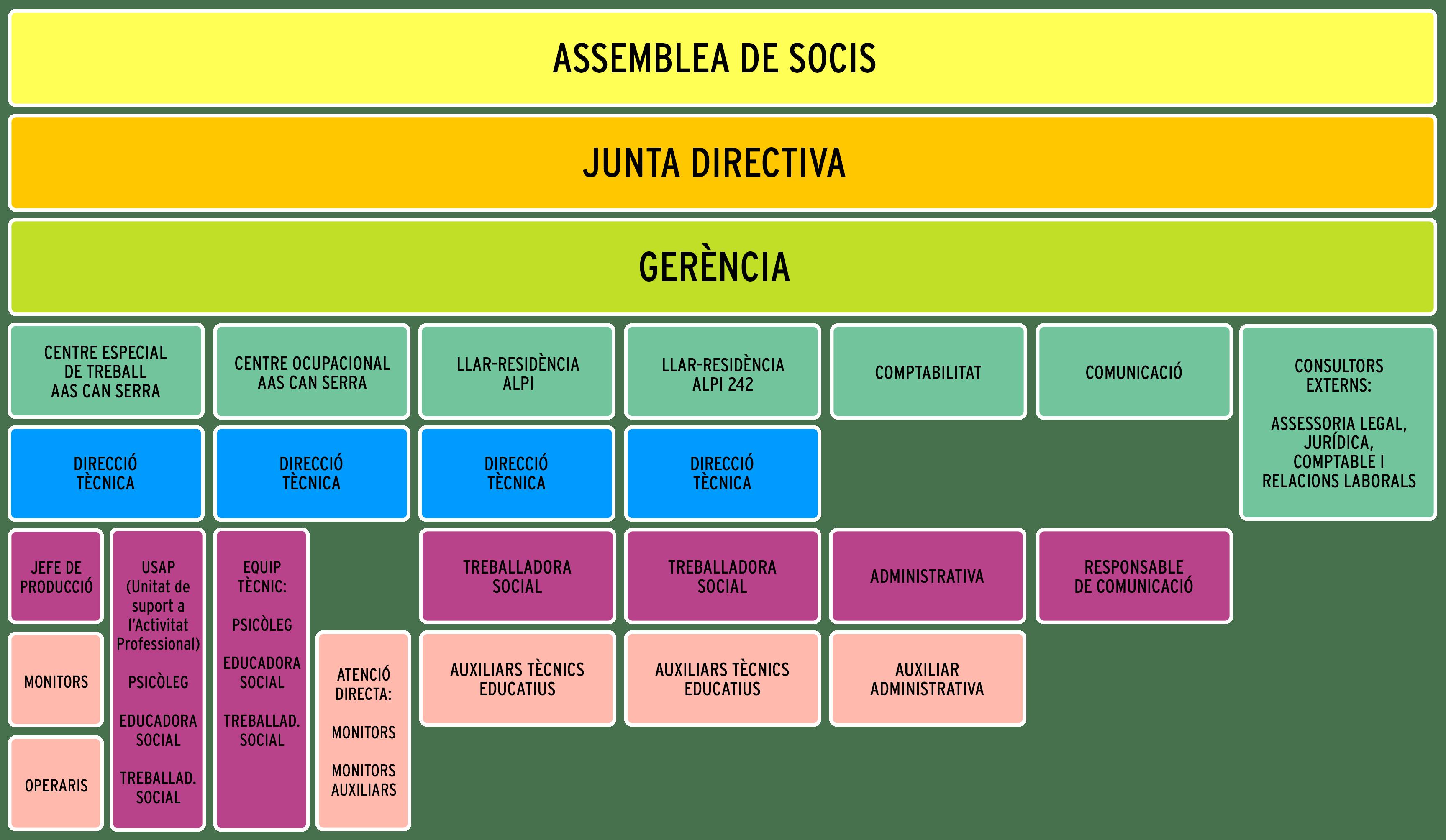 ASOCIACIÓN ALPI, organigrama 2018